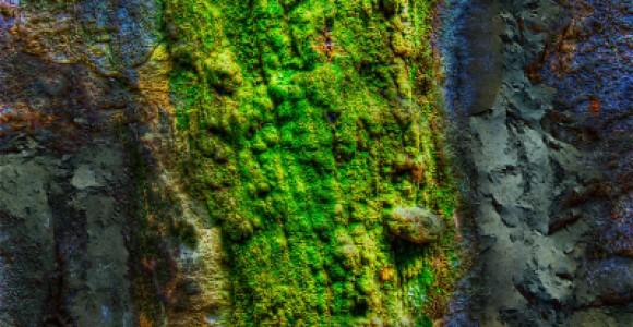 Sean Ward | Photo Gallery | Abstract Digital