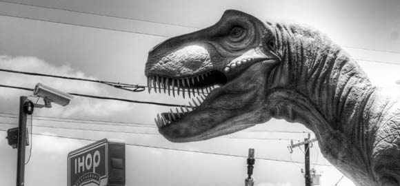 B&W and Selective Color Photo Gallery | T-Rex at IHop
